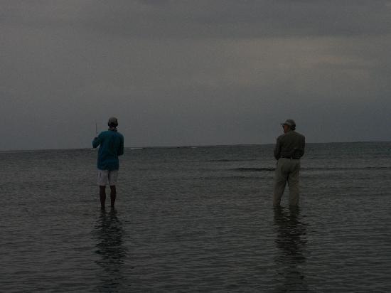 Pescado Roatan