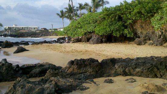 Punahoa Beach Apartments: Beach in front of condo