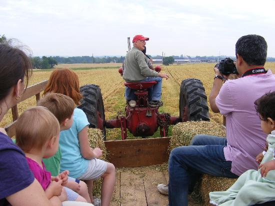 Country Log House and Farm: tractor ride