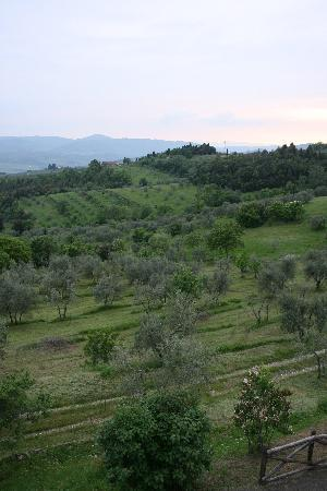 Podere Castellare - Eco Resort of Tuscany: View for around propertry 2