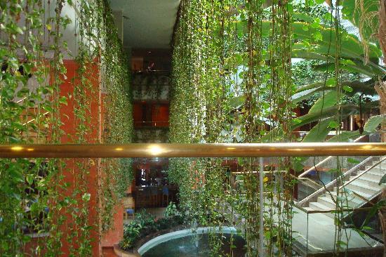 Hotel Gala : Atrium view...