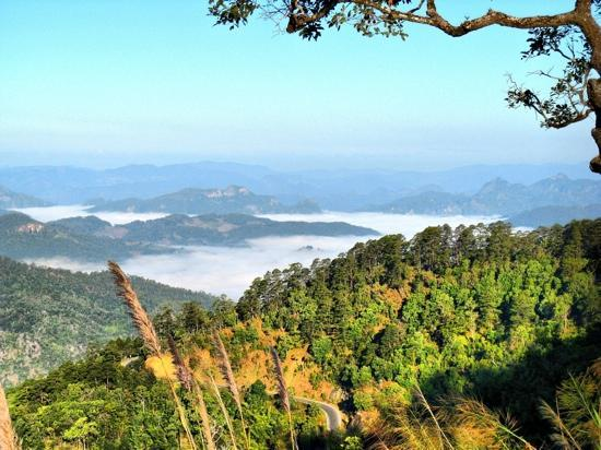 Mae Hong Son Loop : Sea of cloud