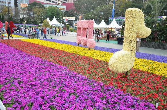 Hong Kong Flower Show: HK Flower 8