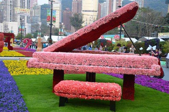 Hong Kong Flower Show: HK Flower 9