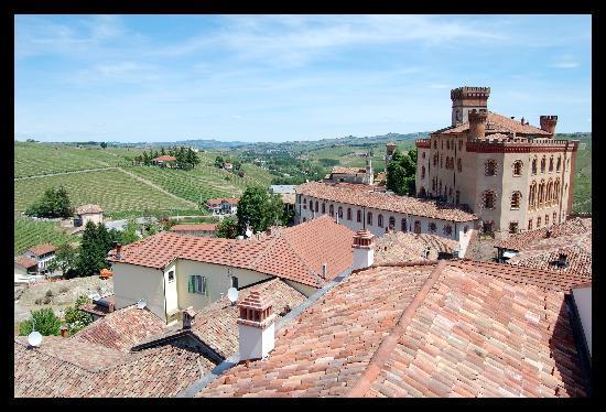 Barolo, Italy: vista panoramica sul castello e le vigne intorno