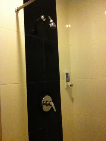 Studio One Residence: Shower