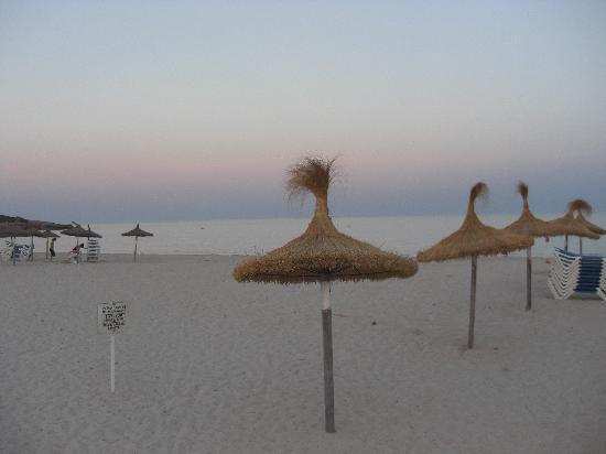 Protur Sa Coma Playa Hotel & Spa: The beach