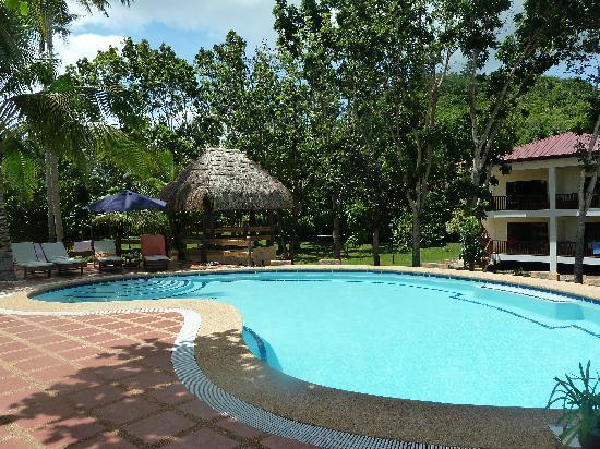 Blue Star Dive & Resort: Pool mit Gästehaus