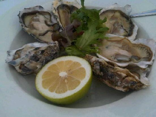 Apple Tree Guest House : Fresh oysters