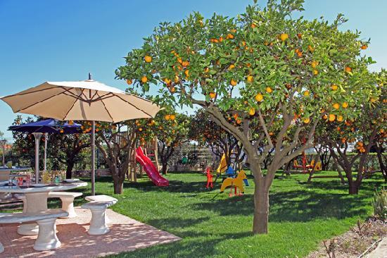 Casa da Horta: Playground