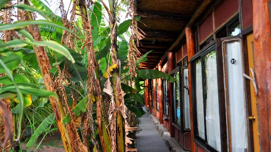 Hotel Manavai: Habitaciones
