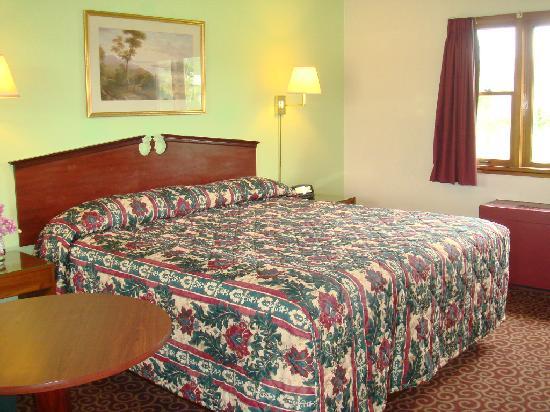 Wye Motor Lodge: King Bed