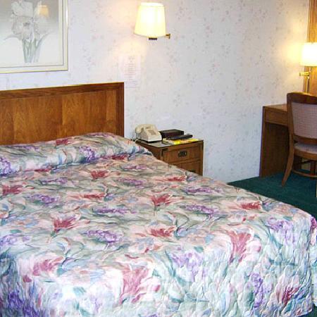 Sonner Motor Inn : guest room