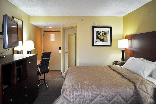 Comfort Inn: Standard King