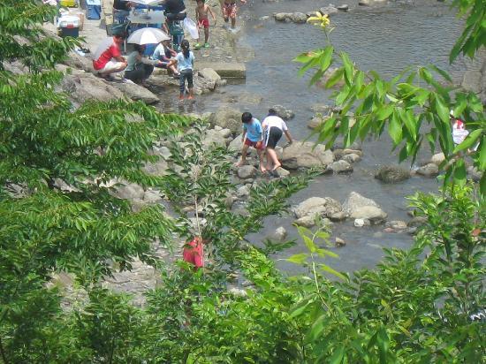 Iyoyakano Sato: 裏手の川です