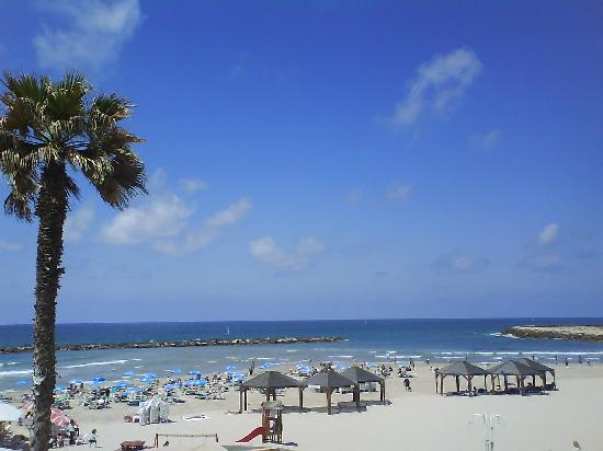 Dan Tel Aviv Hotel: Beach view #1