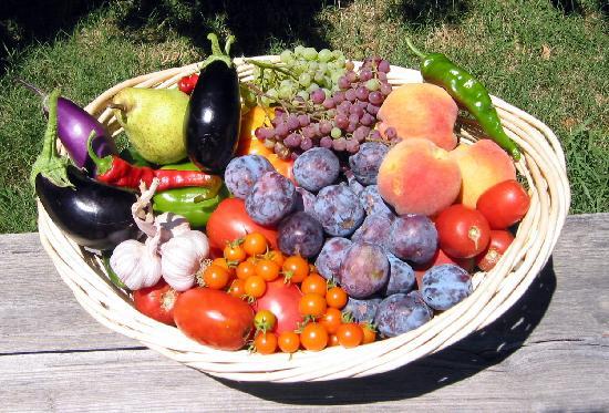 Sandy Bar Ranch: Seasonal fresh organic produce.