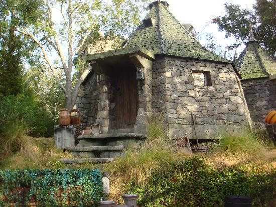 Hagrid 39 s hut picture of the wizarding world of harry What house was hagrid in