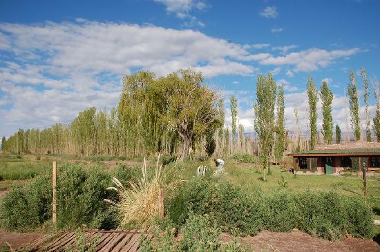 Barreal, Argentine : Traumhafte Umgebung