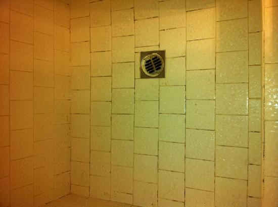 Fireside Inn: Mold and mildew in shower tiles