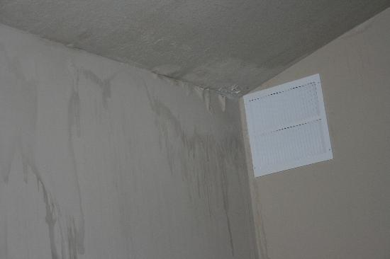 Belamere Suites Hotel : water damage and peeling walls
