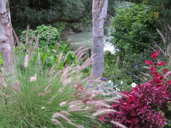 Purangi Gardens Accommodation照片