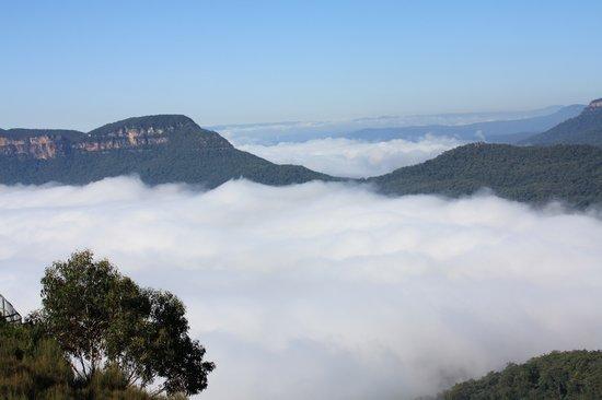 Blue Diamond Tours: The Beautiful Blue Mountains