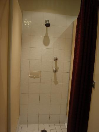 Canberra City YHA: girls shower