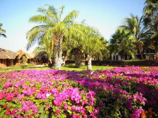 La Teranga Hotel & Villas: Les couleurs de La Teranga