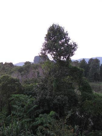 Mandawee Resort & Spa: surroundings