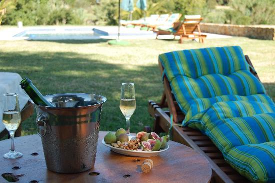 Casa Los Jazmines: champagne at the pool....