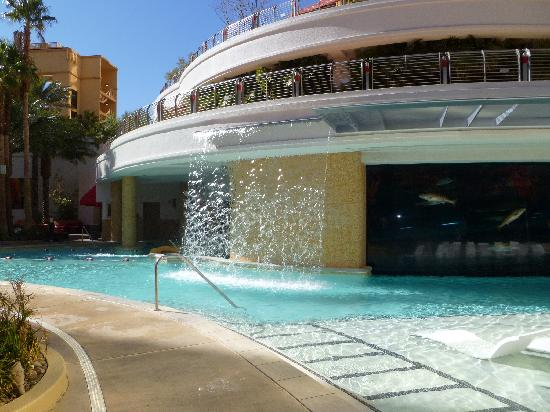 View In Pool Of Shark Tank And Slide Picture Of Golden Nugget Hotel Las Vegas Tripadvisor
