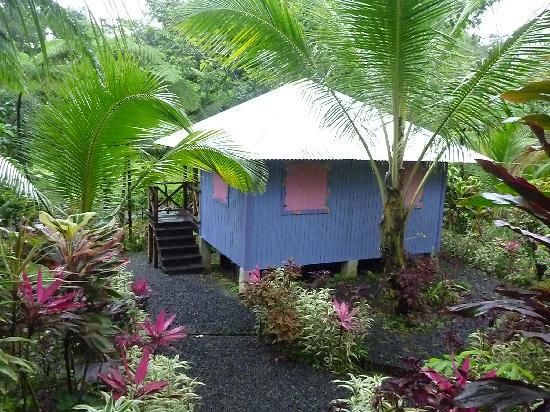 Zen Gardens : Le bungalow