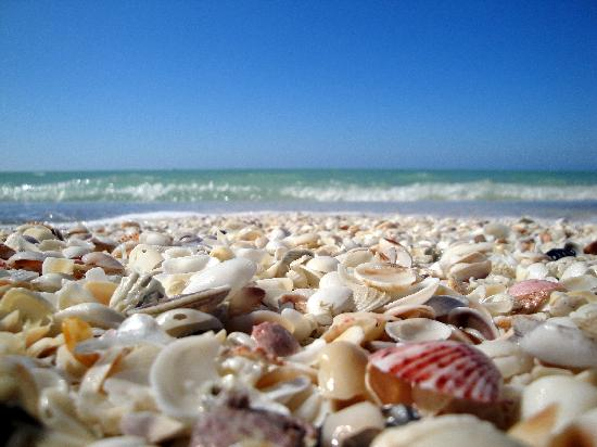 Periwinkle Cottages of Sanibel: The Beach...