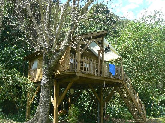 Pointe-Noire, Guadeloupe: Vue de la cabane du pirate