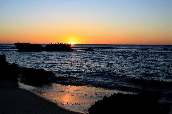 Albacore B&B: Trigg Beach