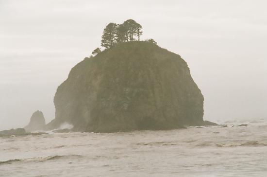 Forks, واشنطن: First beach,LaPush