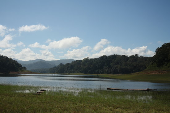 Periyar Tiger Reserve: View of the park