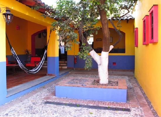 Hostal El Naranjo: Courtyard on Ocampo side