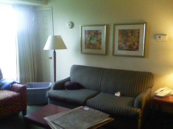 Residence Inn Roseville: Living Room Area