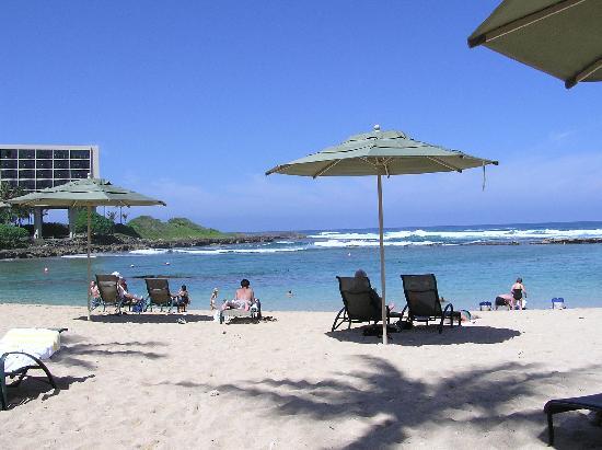Turtle Bay Condos : Beautiful beach area