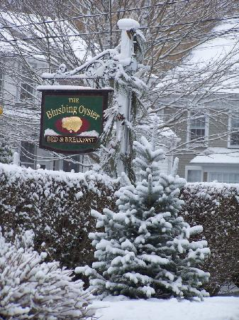 The Blushing Oyster Bed & Breakfast: Unexpected  late March snow