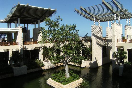 Fairmont Mayakoba: Banyan Tree