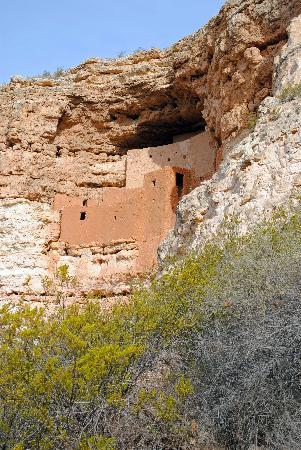 Arizona Scenic Tours - Day Tours: Montezuma's Castle