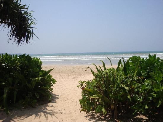 Weligama Bay Resort: Beach