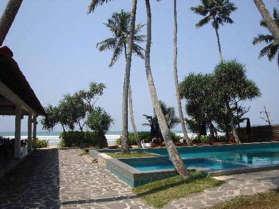 Weligama Bay Resort: The garden