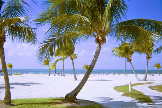 Islamorada Bed and Breakfasts