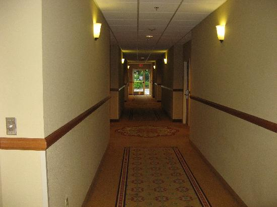 Holiday Inn Express Hotel & Suites Tavares: First floor corridor - neat & clean