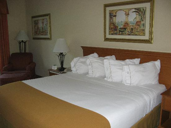 Holiday Inn Express Hotel & Suites Tavares: Nice, comfortable bed to end a long day.