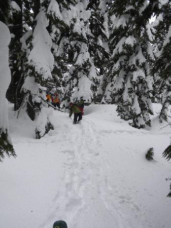 Бенд, Орегон: Running down the hills!